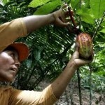Proponen impulsar ecoturismo y bionegocios para lograr competitividad de pobladores de San Martín