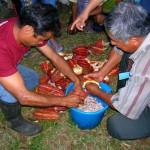 Cafetaleros y Cacaoteros buscan ingresar a la política para concretar leyes y proyectos