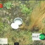 Testigo relata cómo agricultor de Sanabamba fue herido por mina