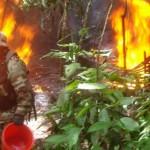 Policía antidrogas de Palmapampa destruyó cinco laboratorios de PBC en el VRAE