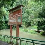 Parque Nacional de Tingo María cumple 44 años de creación como área natural protegida sin apoyo de instituciones