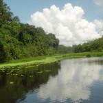 UNAS inaugura foro sobre desarrollo de la amazonía y preservación del medio ambiente