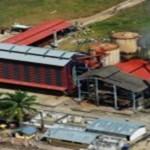 Resaltan esfuerzo de palmicultores de Tocache que inauguraron planta procesadora de aceite de palma