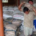 Productores del VRAE venderán al PRONAA 1,490 toneladas de arroz y 595 de frijol