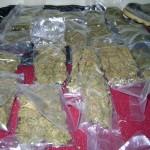 Intervienen conocido centro de microcomercialización de droga en Tingo María