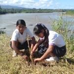 Aucayacu recordó el Día Mundial del Medio Ambiente sembrando árboles en las riberas de los ríos