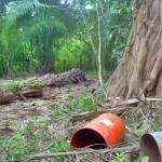 Inaugurarán moderna Planta de reciclaje en Pucallpa