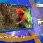 Gran final de Concurso Nacional del Cacao será en Tingo María