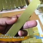 Nueva modalidad para exportar droga fue descubierta por Policía Antidrogas