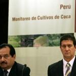 Cultivos de coca ilegal se incrementaron en 4,5% y alcanzaron las 56 mil hectáreas