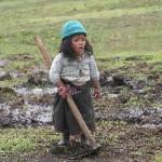 Para terminar con pobreza y trabajo infantil, Estado debe invertir más en educación y políticas sociales