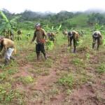 VRAE es el primer productor de cultivos ilegales de coca porque allí no hay erradicación