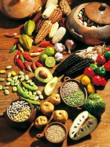 El uso de nuestra diversidad biológica a través del Biocomercio beneficiará la economía nacional