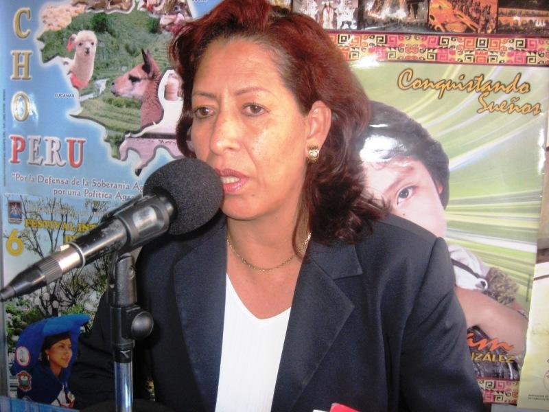 Detectan a 4,430 niños trabajadores en Ayacucho