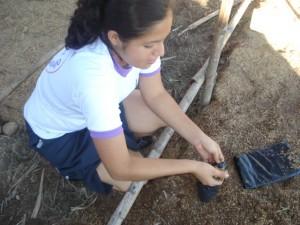 Estudiante del colegio Inca Huiracocha.