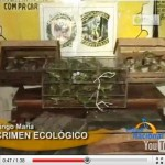 Hallan 40 monos muertos y decomisan 150 loros en Tingo María (video)