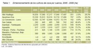 Crecimiento en Aguaytía destaca entre los otros presentados en informe de UNODC.
