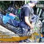 Desbaratan un laboratorio de PBC en caserío Porvenir de Marona (video)