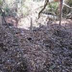 Ya son 136 los laboratorios de droga destruidos en zona de erradicación de coca ilegal