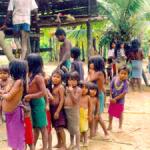 Aprueban alfabeto de dialecto kakataibo para las regiones de Ucayali, Huánuco y Loreto