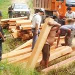 Incautan madera ilegal en puerto de Yurimaguas