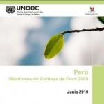 Producción de cultivos de coca ilegal se incrementó en 6.8 en el 2009 en el país