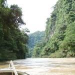 Destacan dos primeras concesiones de bosques otorgadas por Gobierno Regional de San Martín
