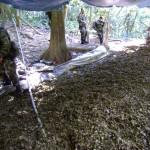 Policía destruyó cinco laboratorios de droga en el valle del Monzón