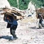 Seminario sobre Buenas Prácticas para la Prevención y Erradicación del Trabajo Infantil en América Latina