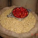 Concurso servirá para mantener prestigio que ha ganado café peruano en el extranjero