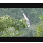Chazuta, la carretera y sus reservas naturales (video)