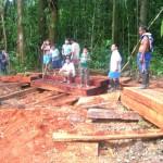 Reforestarán áreas degradadas por cultivos de coca ilegal en Padre Abad