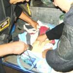Policía captura a dos 'burriers' con 10 kilos de PBC en el Peaje de Soccos