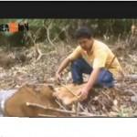 Electro Oriente destruye área de conservación en San Martín (video)