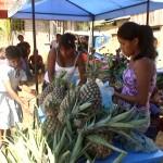 Se inició III Expoferia Agropecuaria por fiesta patronal en Kimbiri, VRAE