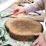 Unión Europea prohíbe comercio de madera procedente de la tala ilegal