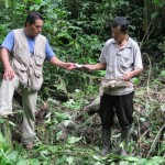 Autoridades realizaron visita de inspección en Parque Nacional de Tingo María