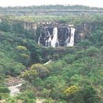 Gobierno de Brasil paga deuda con EEUU protegiendo bosques tropicales