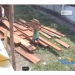 Cerca de 20 mil pies de madera se incautaron en una semana en Tingo María