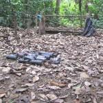 Destruyen tres nuevos laboratorios de droga en campos de erradicación en Aguaytía