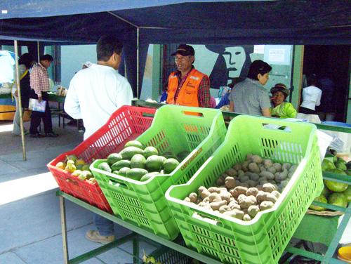 Darán incentivos a pequeños y medianos agricultores en Ayacucho