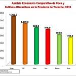 Cacao, café y palma son más rentables que la hoja coca en la provincia de Tocache