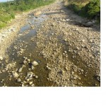 Río Huallaga y turística Laguna Sauce disminuyen notablemente su caudal