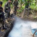 Ejército capturó a dos presuntos senderistas en Madre Mía, Tocache