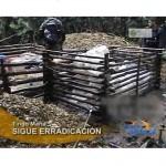 Policía antidrogas destruye tres laboratorios clandestinos de droga en Aguaytía (video)
