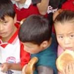 PRONAA investiga graves irregularidades en colegios de Aguaytía
