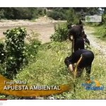 """Lanzan campaña """"Adopta una planta"""" en Tingo María (video)"""