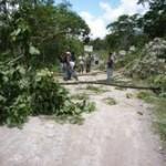 Cocaleros bloquean carretera al valle del Monzón