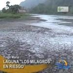Autoridades buscan salvar la laguna Los Milagros de Leoncio Prado (video)