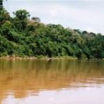 Parque Nacional Alto Purús celebra su sexto aniversario